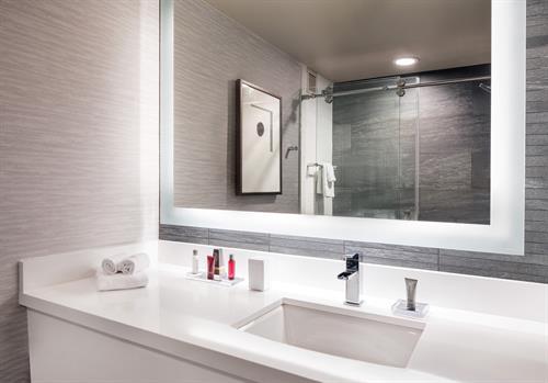 Standard Model Bathroom