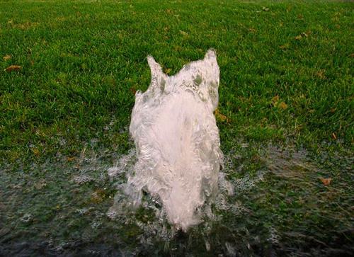 Gallery Image brokensprinklerhead.jpg
