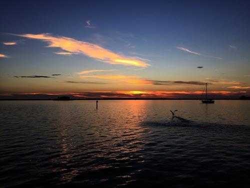Beautiful Calm Night at Dunedin Dockside