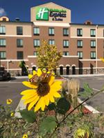 HOLIDAY INN EXPRESS Castle Rock