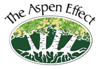 The Aspen Effect