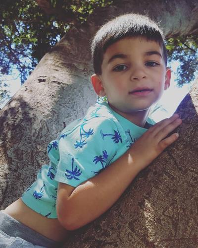 This is my son Isaac. He loves to climb trees and laugh hard!