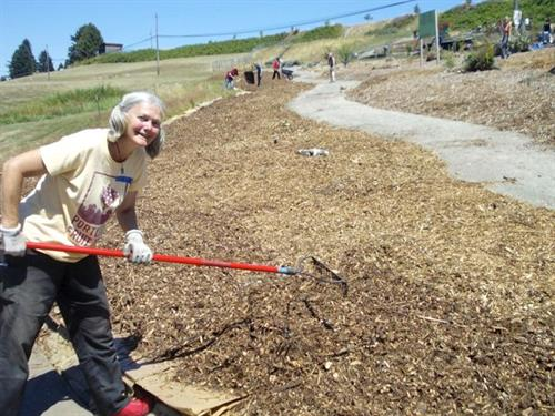 Sheet mulching at the Beacon Food Forest in Seattle