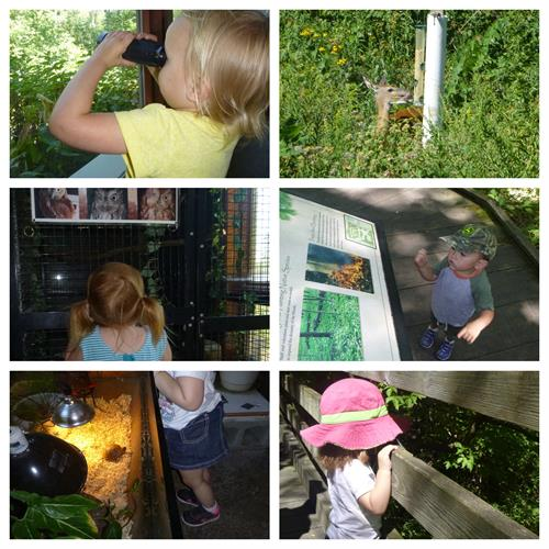 Photos from a Lovebugs Playdate to the Anita Purves Nature Center/Busey Woods.