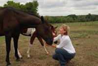 Love my horses!
