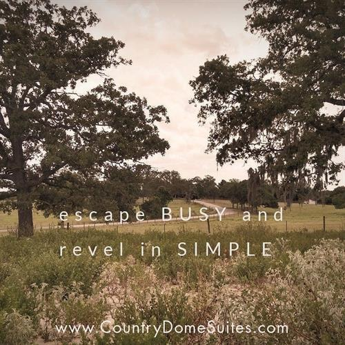 escape BUSY and revel in SIMPLE