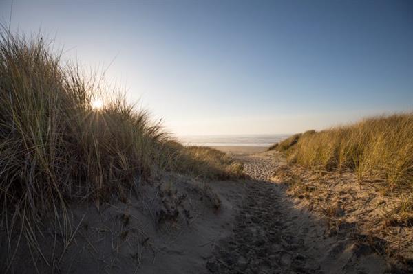 Gallery Image Beach_Dunes.jpg