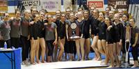 EHS Gymnastics 2nd at State Competition