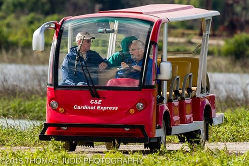 Take at tour of Wildlife Drive on  open air, all-electrci tram!