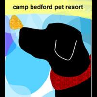 Camp Bedford Pet Resort