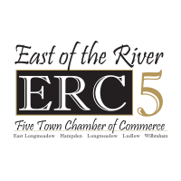 SENATOR LESSER ATTENDS VIRTUAL TOWN HALL WITH EAST OF THE RIVER FIVE TOWN CHAMBER OF COMMERCE