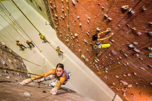 Wild Walls Climbing Gym & Yoga