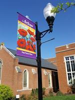 Shenandoah Arts Council - Winchester
