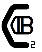 DB Cybersecurity Consulting