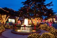 Forest City Holiday Fountain