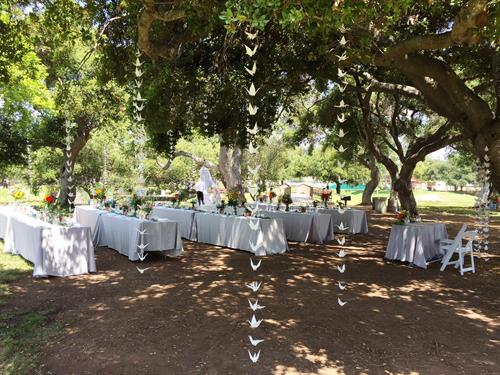 Fairy-tale wedding