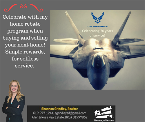 Gallery Image Air_force_appreciation.png