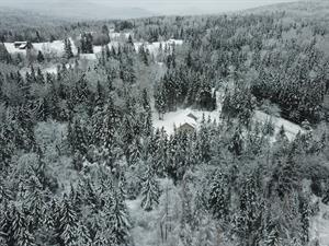 All Snowed Inn, LLC