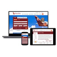 Bearskin Airlines Website Design