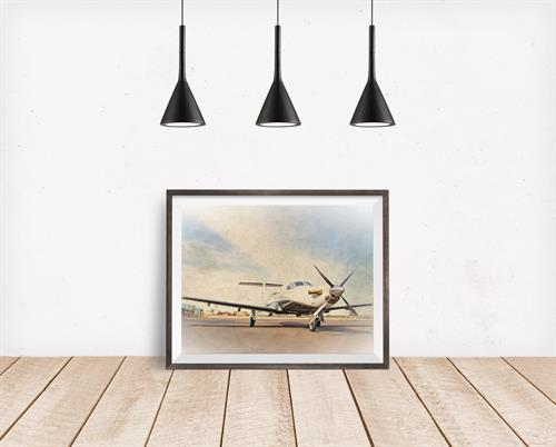 Gallery Image Pilatus_on_display.jpg