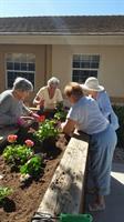 Ladies Gardening