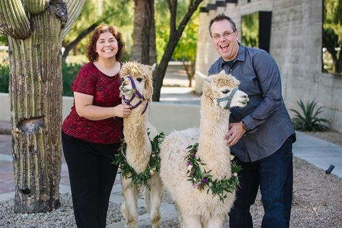 Gallery Image Alicia_and_Jeremy_with_Llamas_at_Wipa_-_Katrina_Wallace_Photo.jpg