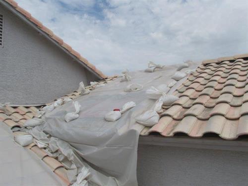 Roof Tarp