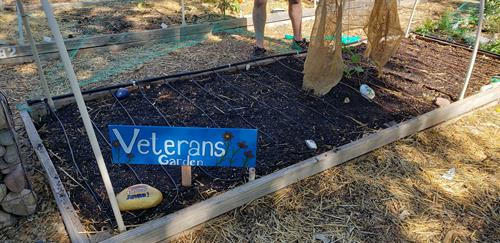 MVRC Community Garden Plot