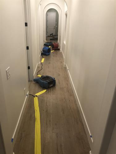 Drying walls