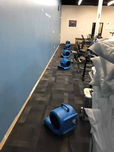 Drying Walls and Flooring From Burst Pipe