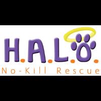 HALO's Faux Fur Ball