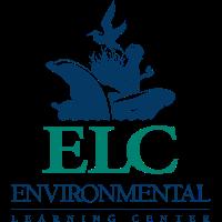 STEAM Summer Immersion program @ ELC