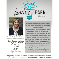 Lunch-N-Learn Virtual Series w/Martha Clarke
