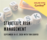 Strategic Risk Management *ONLINE*