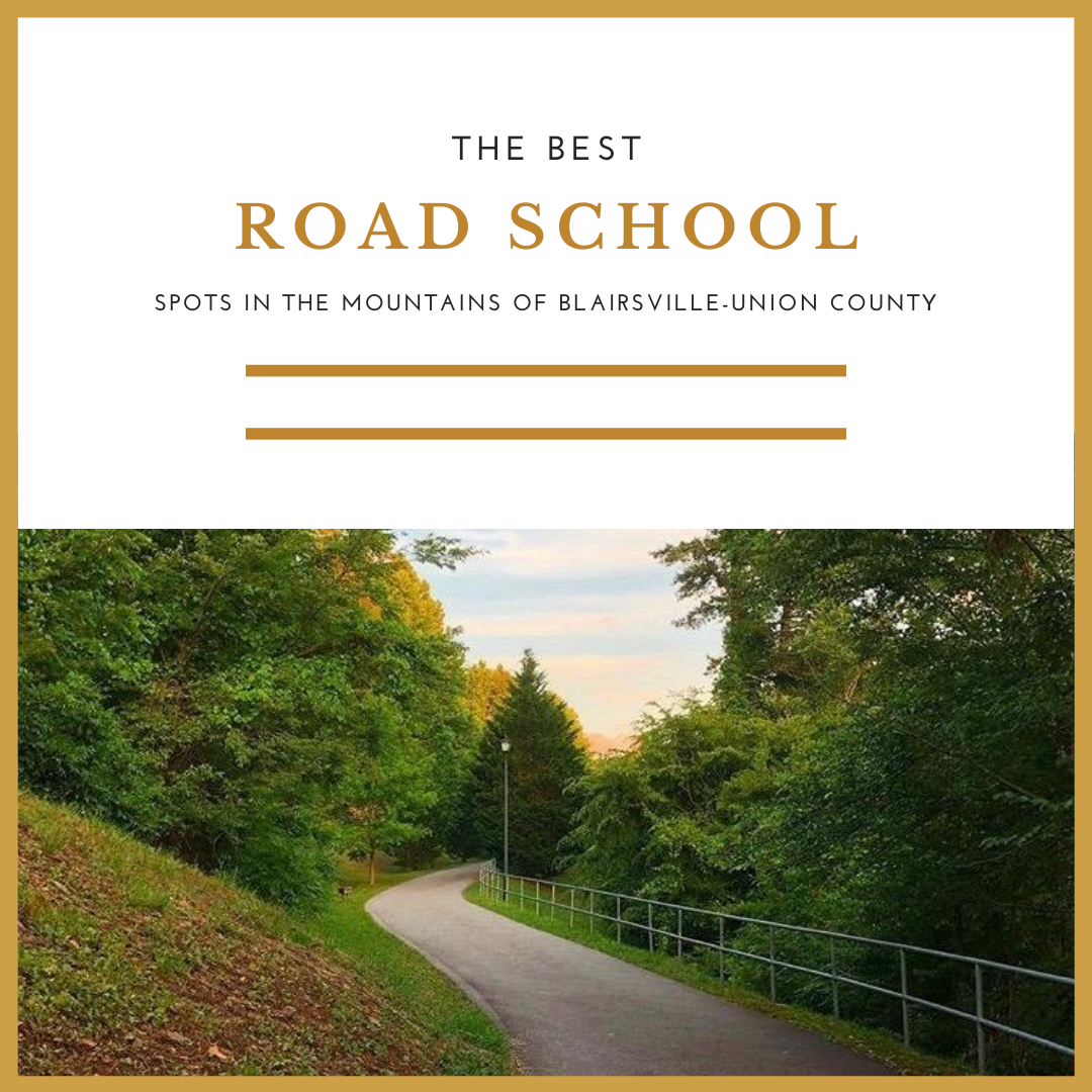 Road School Day Trips in the North Georgia Mountains