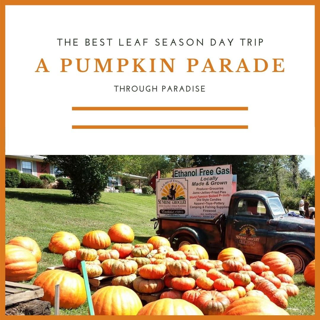 Image for Best Leaf Season Day Trip:  A Pumpkin Parade Through Paradise
