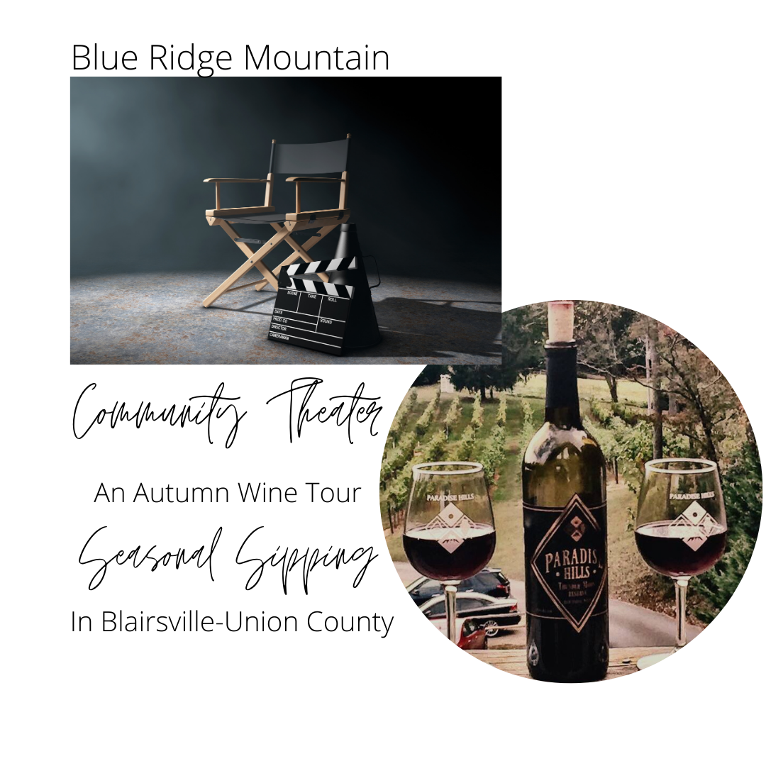 A Wine Tour, Dinner and a Show in the Mountains
