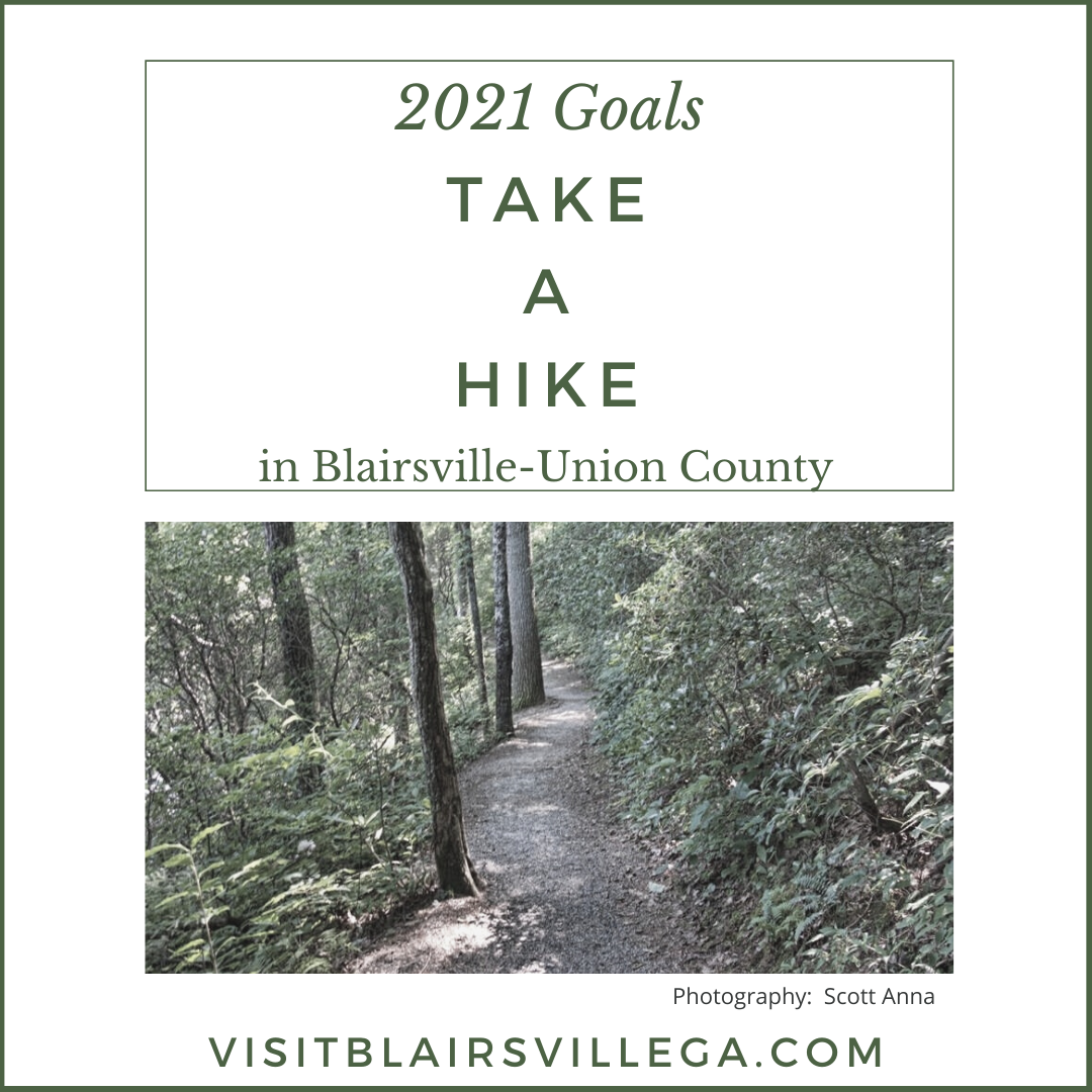 Image for Go Take a Hike:  12 Great Trails of North Georgia