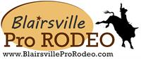 10th Annual Blairsville Pro Rodeo
