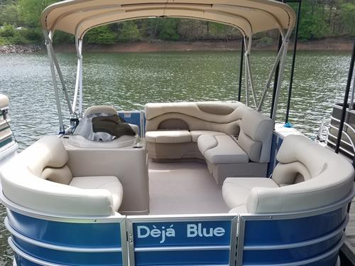 Deja Blue - Rental Pontoon