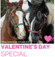 Valentine Guided Horseback Trail Ride
