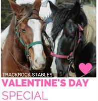 Valentine Guided Horseback Trail Ride