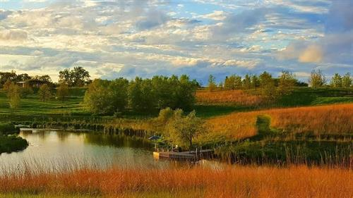 Homestead Vista by T Collins