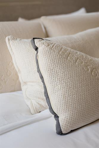 Sleep365 Pillows