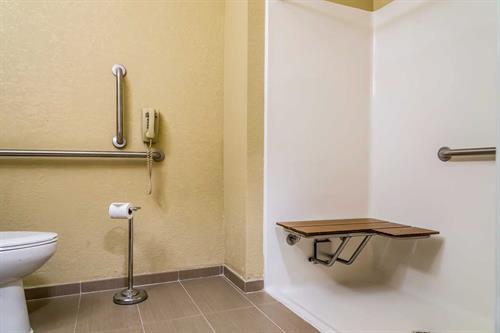 Gallery Image Handicap_Room_Walkin_Shower.jpg