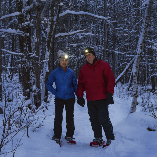 Try snowshoeing at night for a truly unique experience.