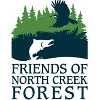 Forest Bathing @ North Creek Forest (mid-week)