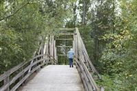 The Bridge at Bothell Landing