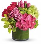 The Bothell Florist