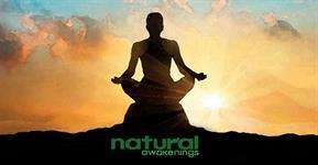 Seattle Natural Awakenings Magazine